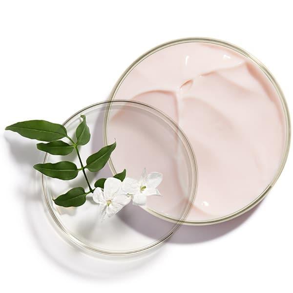 Aktivni sastojci Crème Prodigieuse® Boost